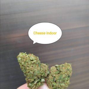 Cbd wiet Cheese